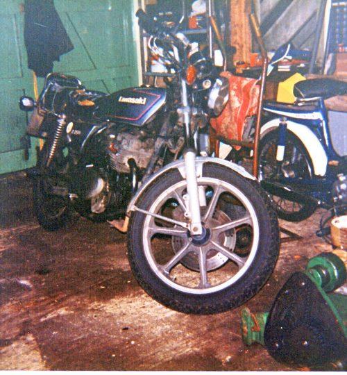 cica-1990